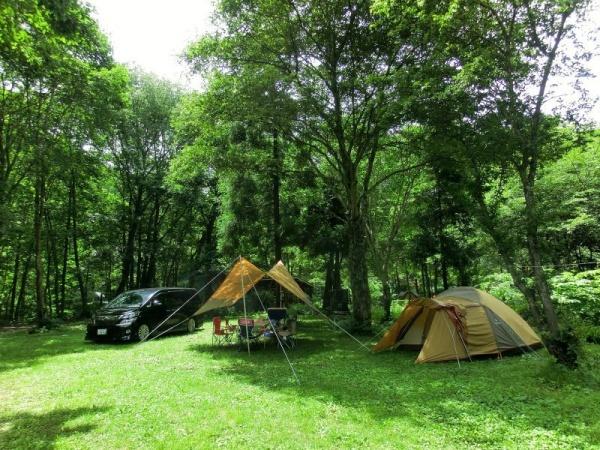 画像1: キャンプサイト